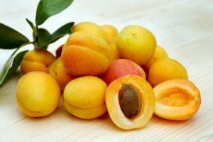 Dürfen Hunde Aprikosen essen