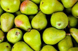 Dürfen Hunde Birnen essen