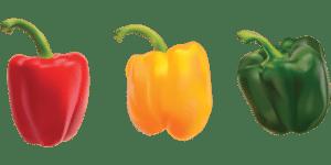 Dürfen Hunde Paprika essen