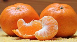 Dürfen Hunde Mandarinen essen