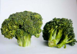 Dürfen Hunde Brokkoli essen