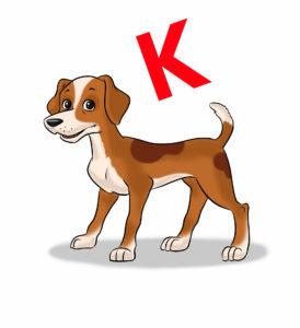 Hunderassen mit K