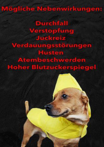 Dürfen Hunde Bananen essen